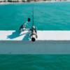 海で投げ釣りを始める初心者におすすめのリールは?ランキングで紹介!